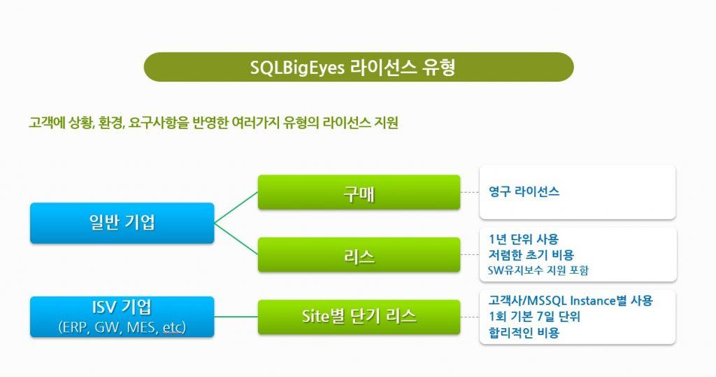 SQLBigEyes_License7